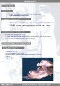ambarviajes - Kananga y Ambar - Page 4