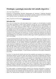 Fisiología y patología muscular del caballo deportivo - Jinetes de Raid