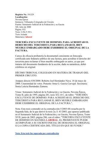 DEMANDA DE TERCERIA EXCLUYENTE DE DOMINIO ...