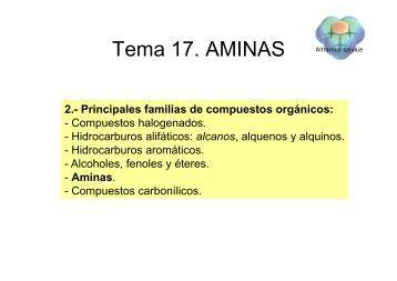 T 17 AMINAS Tema 17. AMINAS