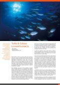 turks & caicos - Bernardo Sambra Photography - Page 2