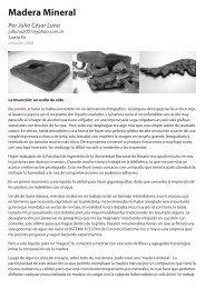 Madera Mineral - Innovar