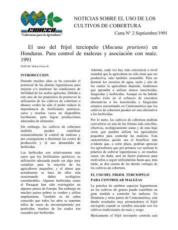 El uso del frijol terciopelo (Mucuna pruriens) en ... - CIDICCO