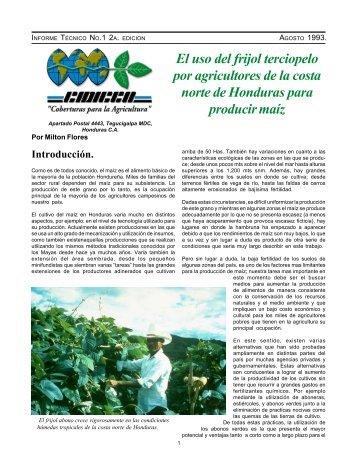 El uso del frijol terciopelo por agricultores de la costa ... - CIDICCO
