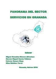 Panorama del sector servicios en Granada (13%) - Caja Rural de ...