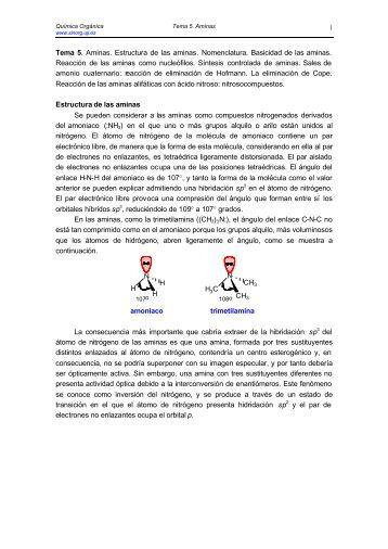 Aminas - Grupo de Sintesis Organica Universidad Jaume I