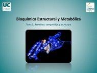 Tema 3. Proteínas: composición y estructura