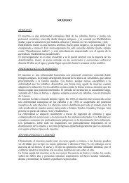 ENCEFALOMIELITIS ENTEROVÍRICA PORCINA \(Enfermedades ...