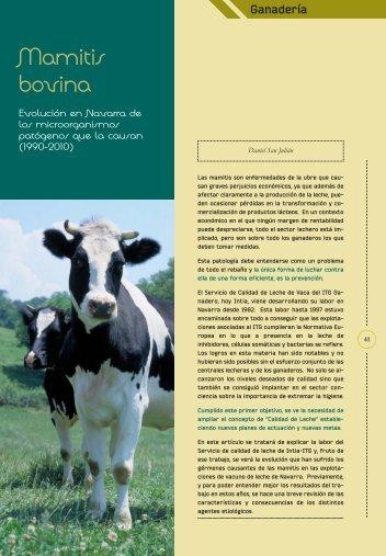Mamitis bovina - Navarra Agraria