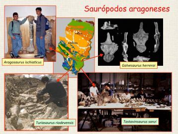 Saurópodos aragoneses - Aragosaurus