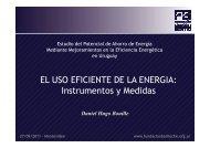 Instrumentos y Medidas.pdf - Eficiencia Energética Uruguay