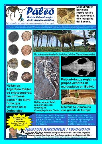 Hallan en Argentina fósiles de criptoesporas, las primeras plantan ...