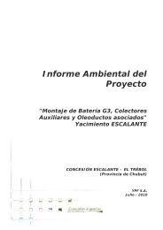 Informe Ambiental del Proyecto - Organismos