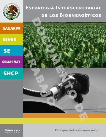 Estrategia Intersecretarial de los Bioenergéticos - SNITT