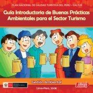 guía introductoria de buenas prácticas