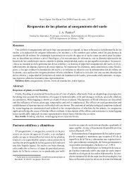 Respuestas de las plantas al anegamiento del suelo - Inia