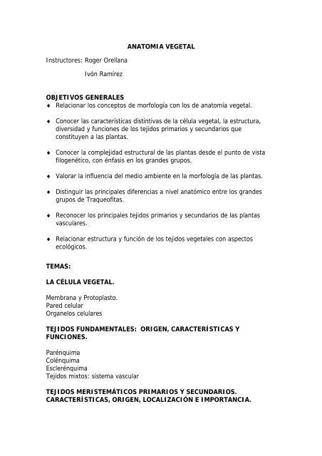 Anatomía Vegetal Cicy