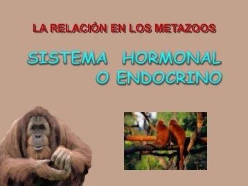 """LA RELACIÓN EN LOS ANIMALES - ies """"poeta claudio rodríguez"""""""