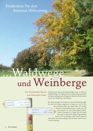 Waldwege und Weinberge - Remstal-Route