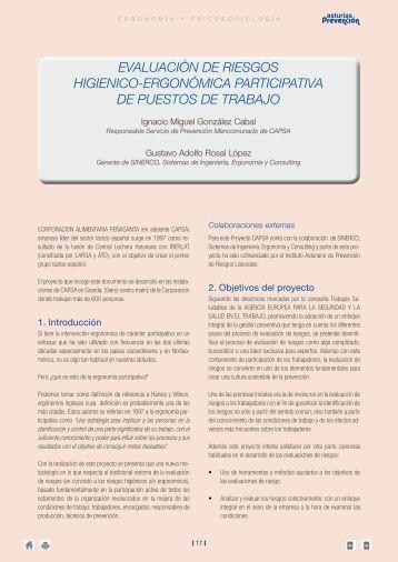 EVALUACIÓN DE RIESGOS HIGIENICO ... - Index of - sinerco