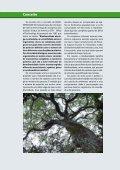 Biodiversidade Amazônica - Biblioteca da Floresta - Page 3