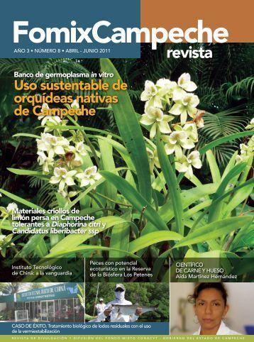 Uso sustentable de orquídeas nativas de Campeche