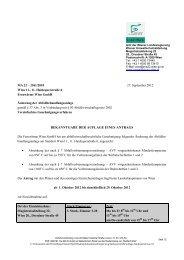 245 KB PDF - Wien