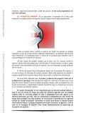 Informe 3/11. Municiones policiales inadecuadas - Page 5