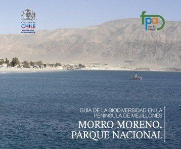 Morro Moreno - Sinia