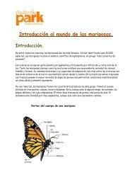 Introducción al mundo de las mariposas - Butterfly Park