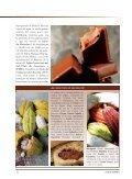 Y ¡vaya cacao! La baya, en España, en taza. Con ... - Oscar Caballero - Page 5