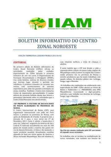 boletim informativo do centro zonal noroeste - Instituto de ...