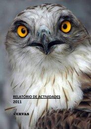 relatório de actividades 2011 - aldeia