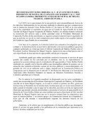 recomendación 30/2003, dirigida al c. juan sánchez flores ...
