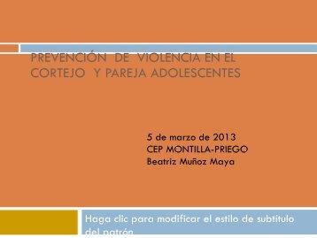 PREVENCIÓN DE VIOLENCIA EN EL CORTEJO Y PAREJA ...