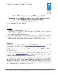 Descargar Minuta Reunión - Programa de las Naciones Unidas ...