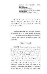 AMPARO EN REVISIÓN 493/2008 - Consejo de la Judicatura Federal