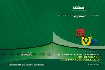 COMPRENDIENDO LA ESTRUCTURA CURRICULAR - Dirección ...