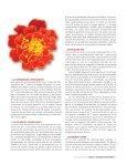 diversidad biólogica y usos - Conacyt - Page 4