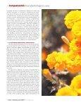 diversidad biólogica y usos - Conacyt - Page 5