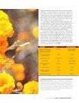 diversidad biólogica y usos - Conacyt - Page 6
