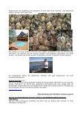 Südafrika – Gruppenreise - Reise Treff Ludwig - Seite 7