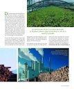España ya recicla al año 4,6 millones de toneladas - Mecalux - Page 2