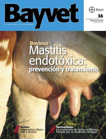 prevención y tratamiento - Bayer Sanidad Animal México
