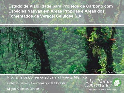 Gilberto Tiepolo - Estudo de Viabilidade para Projetos de Carbono ...