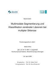 Multimodale Segmentierung und Klassifikation zerebraler Läsionen ...
