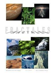 Trabajo Fractales (Amir 2006). - Laboratorio de Procesado de Imagen