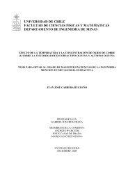 universidad de chile facultad de ciencias fisicas y matematicas ...