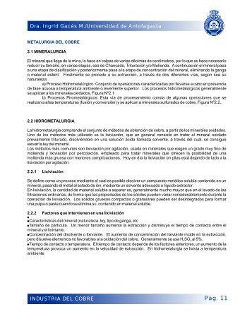 capitulo 2 - Universidad de Antofagasta