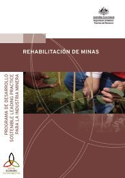 rehabilitación de minas - Department of Resources, Energy and ...